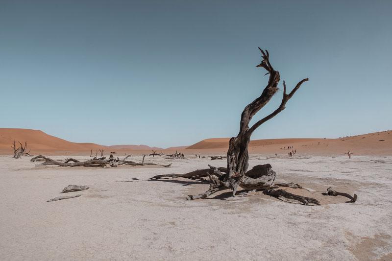 Ympäristöarvot – puheista konkretiaan